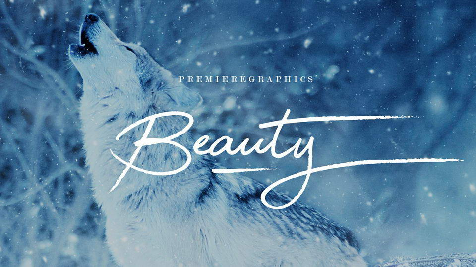 beautyfreefont