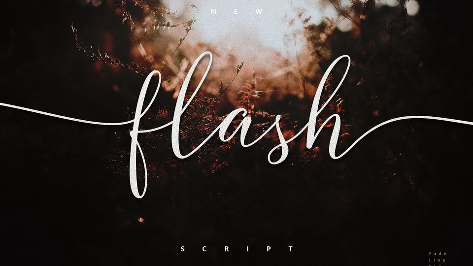 flashscriptfree