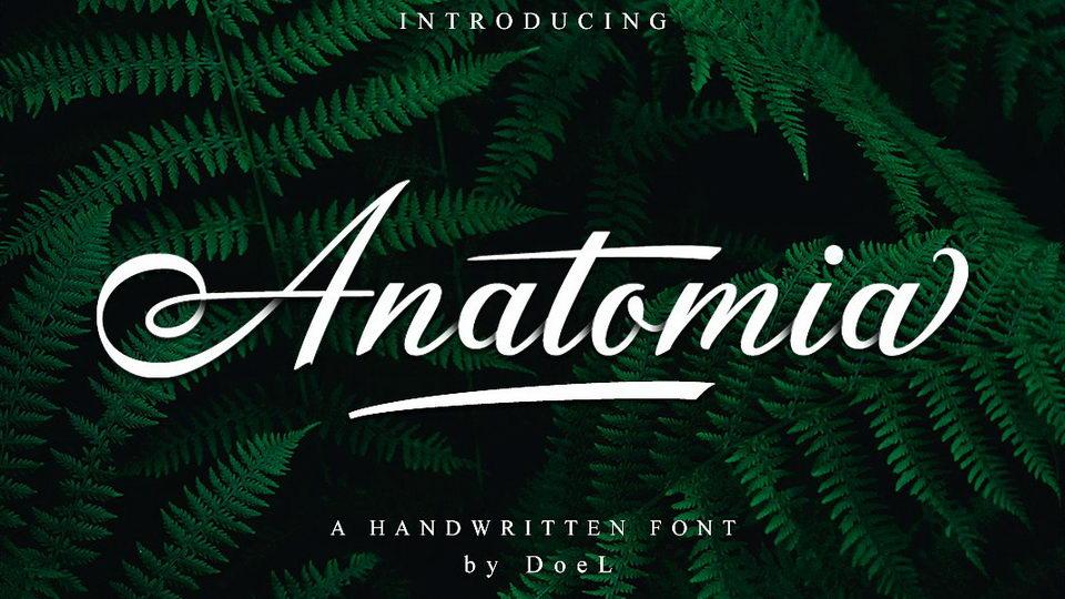 anatomiascript