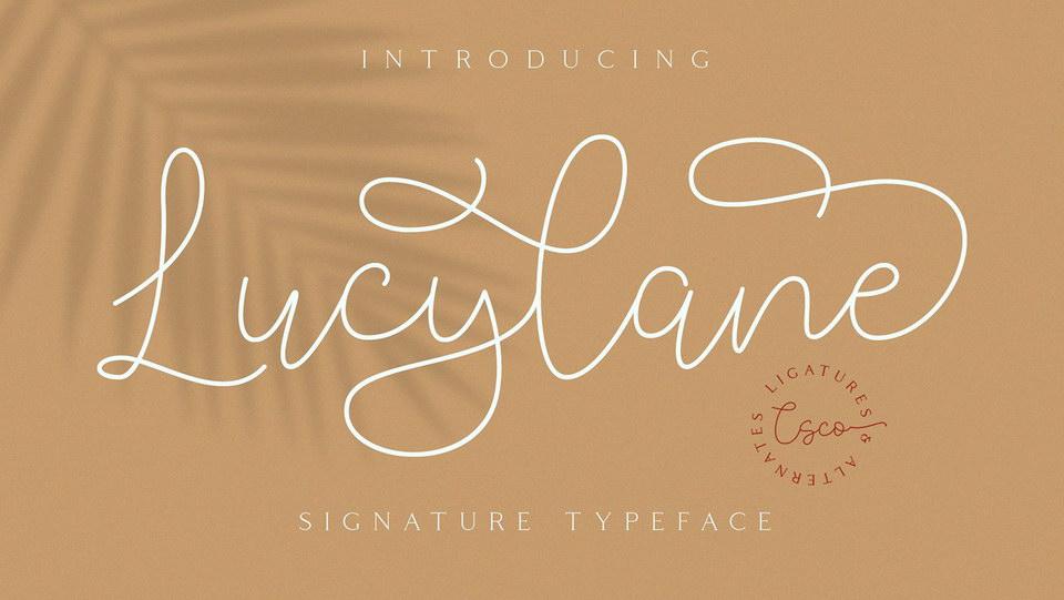 lucylanecript