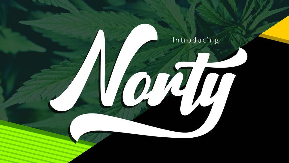 nortyscript