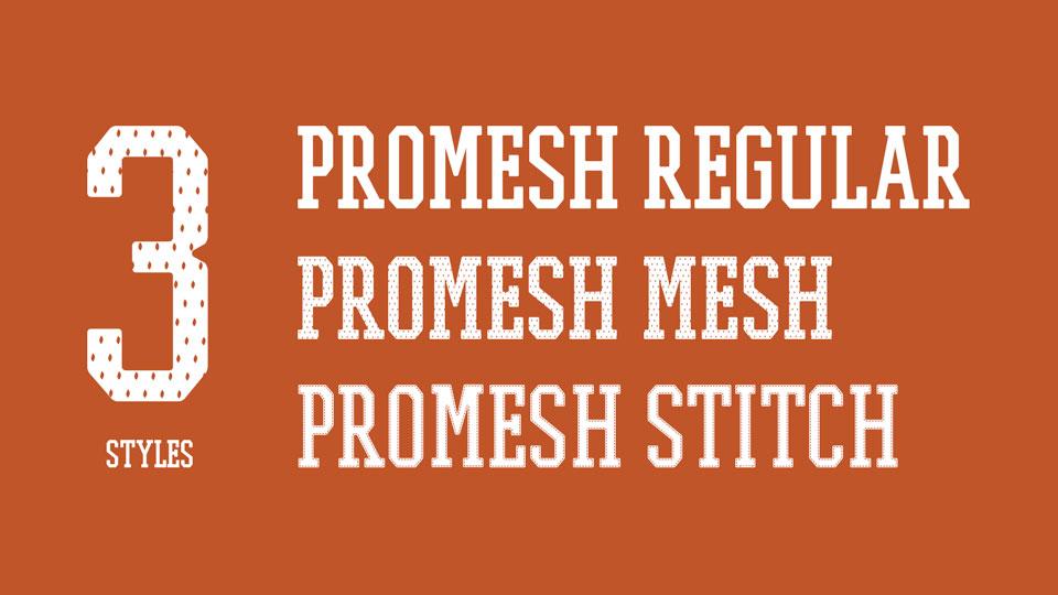 promesh_one-1