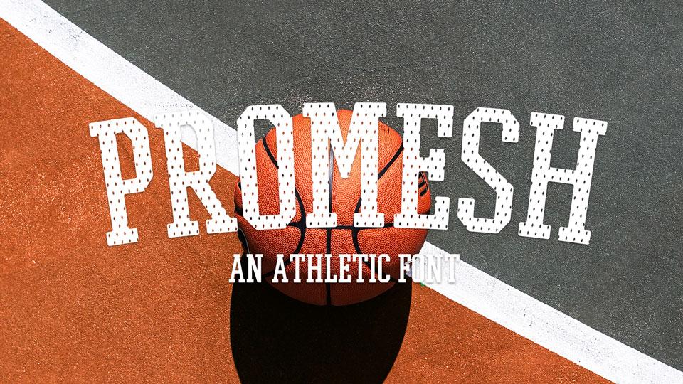 promesh_one