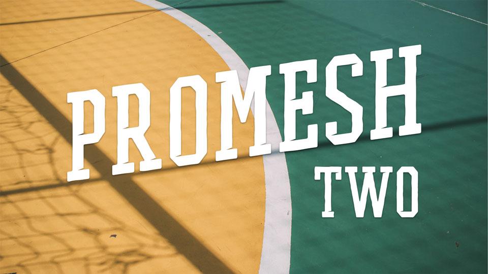 promesh_two