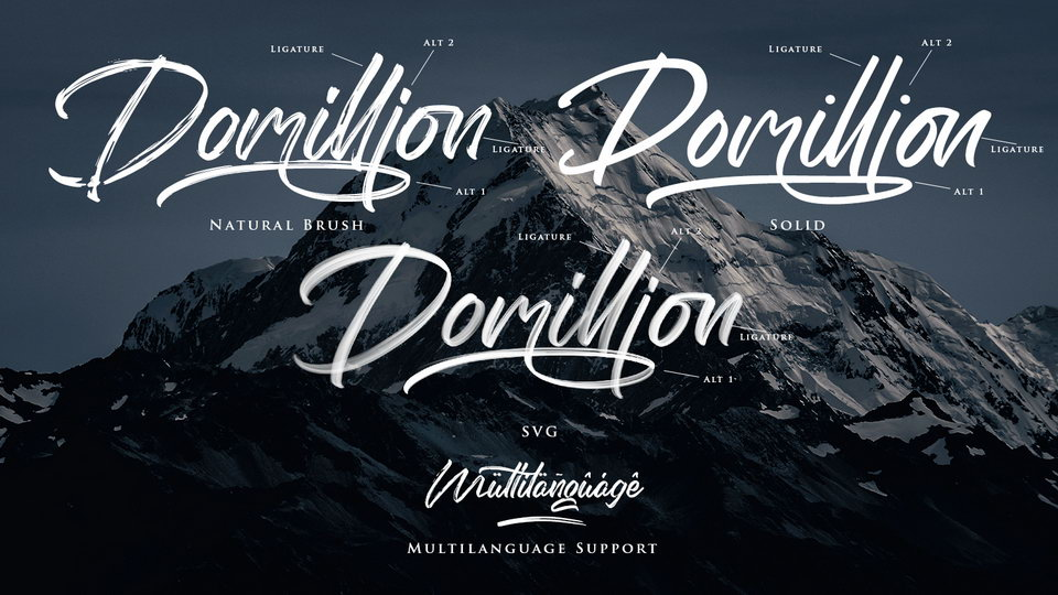 domillion-2