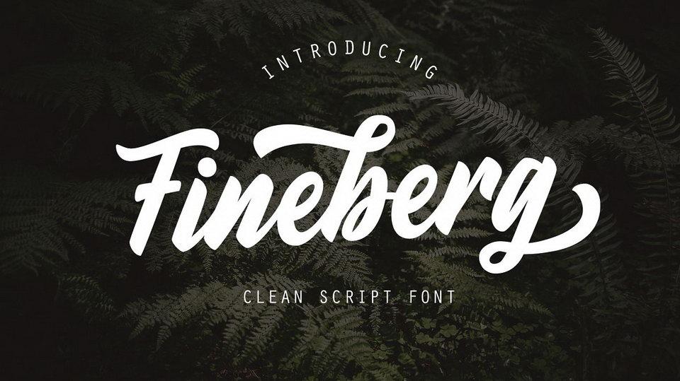 fineberg