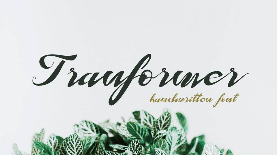 tranformer