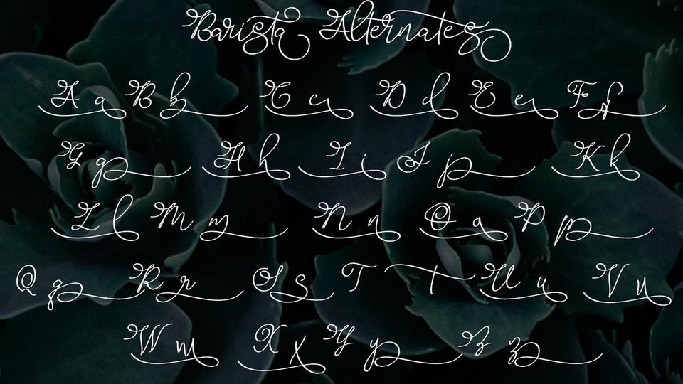 barista script free