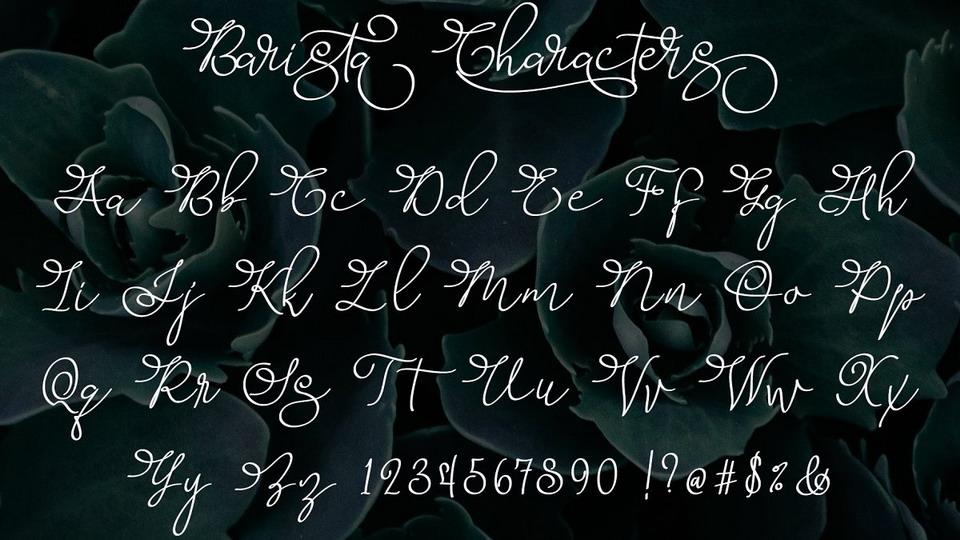 barista script download