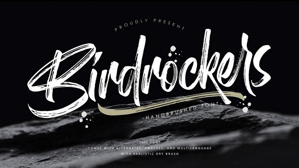 birdrockers