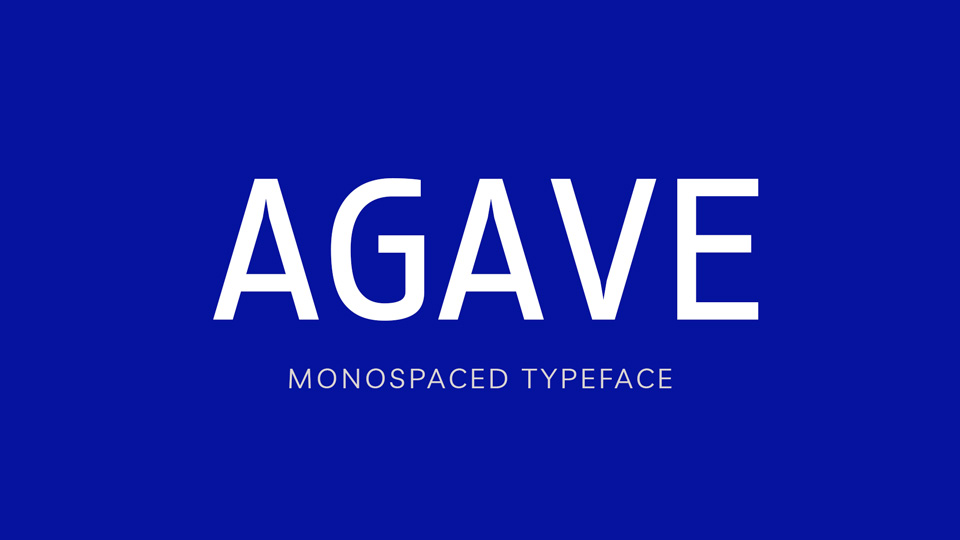 agave-2