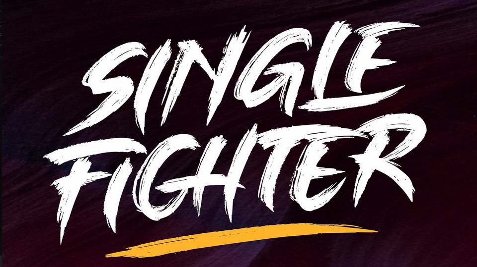 single_fighter