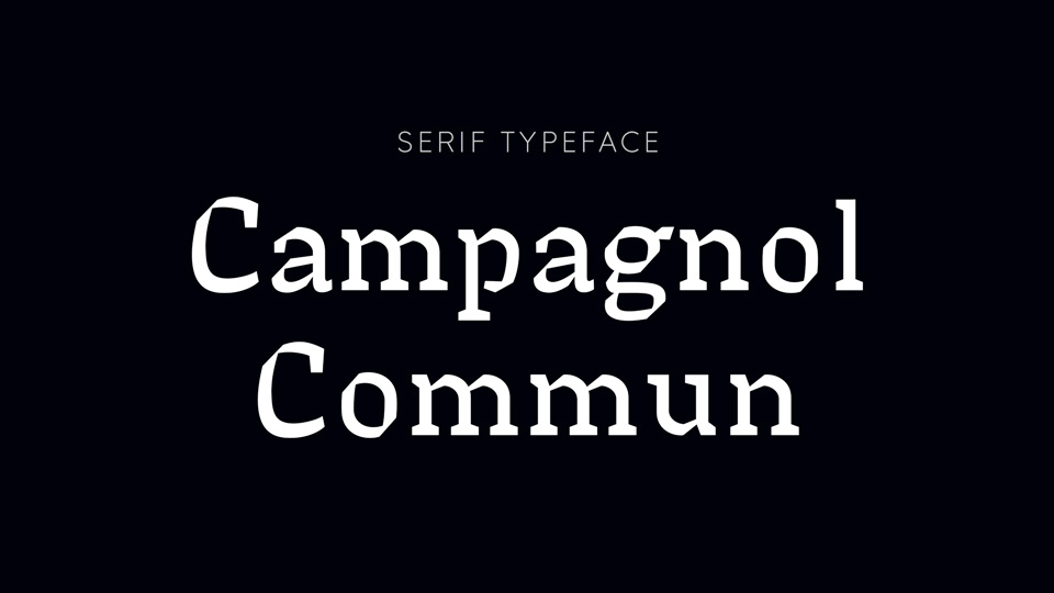 campagnol_commun-1