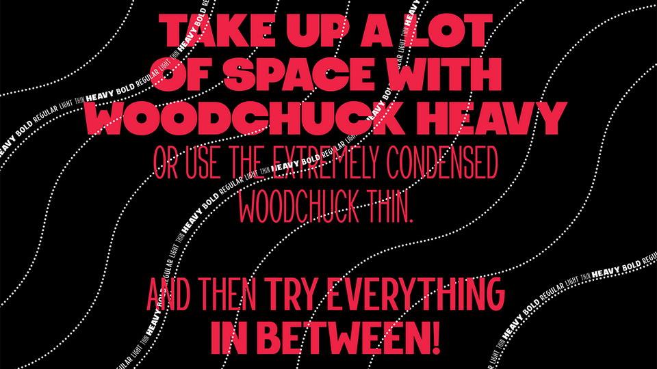 woodchuck-1