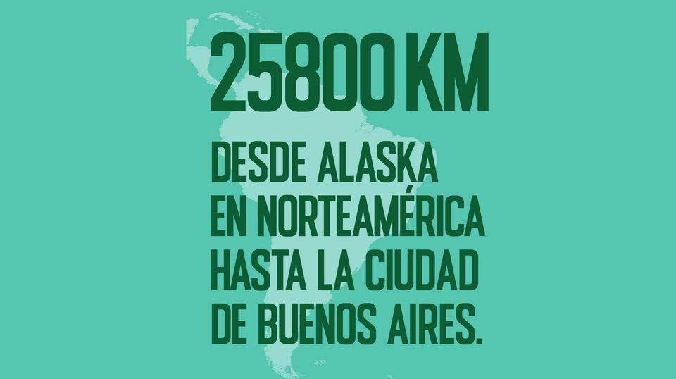 panamericana-2