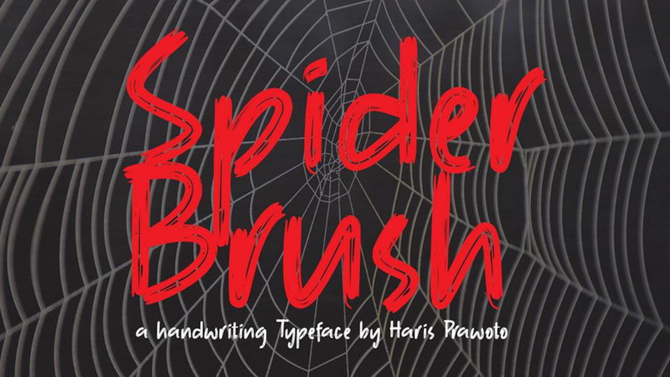 spiderbrush