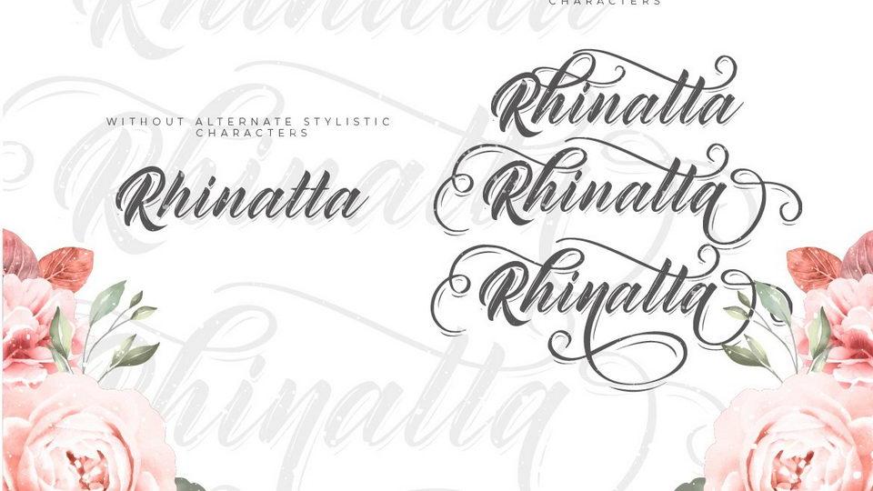 rhinatta-2