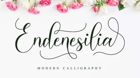 Endenesilia-Fonts-1-1-580×386