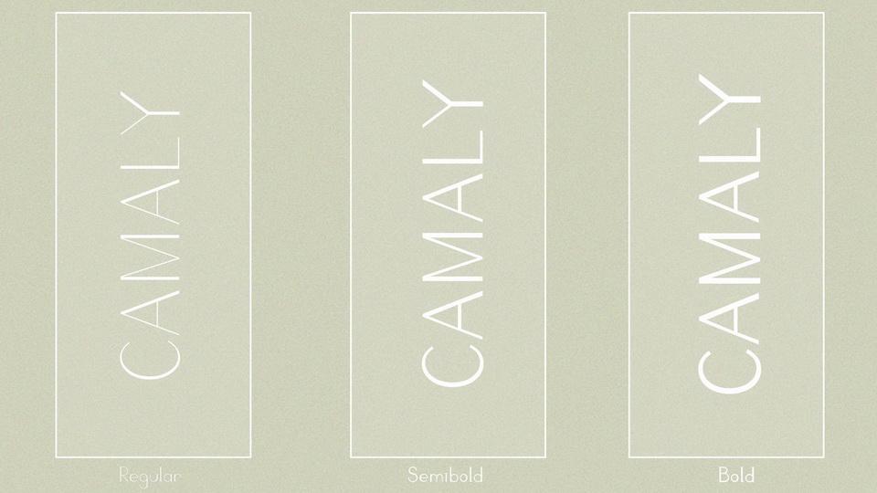 camaly-4