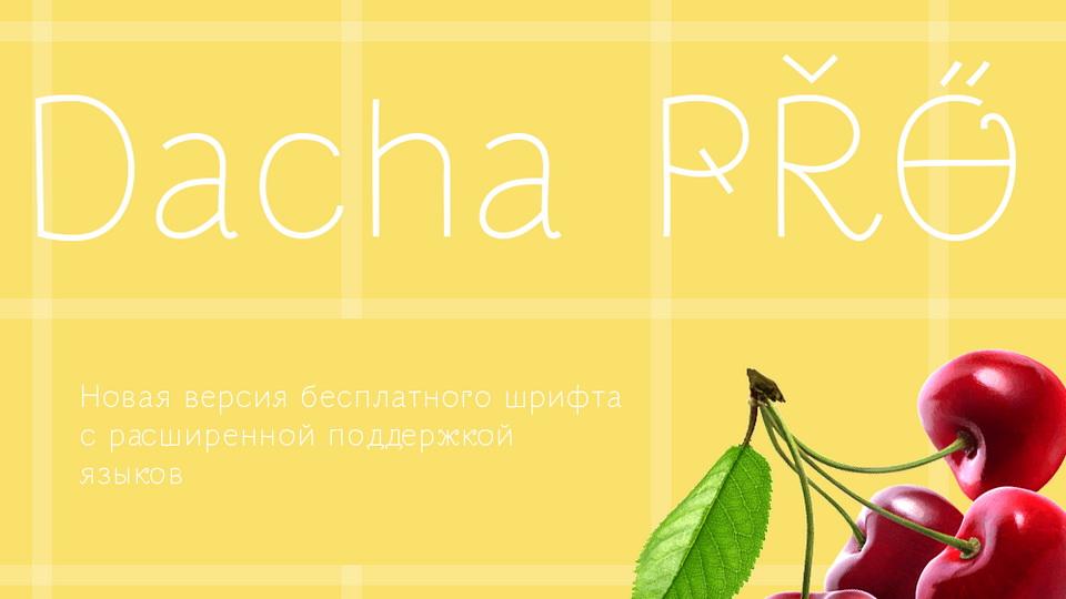 dacha_pro