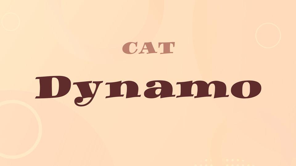 dynamo-2