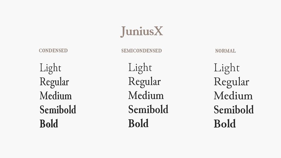 juniusx-2