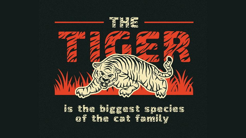tiger_king-2