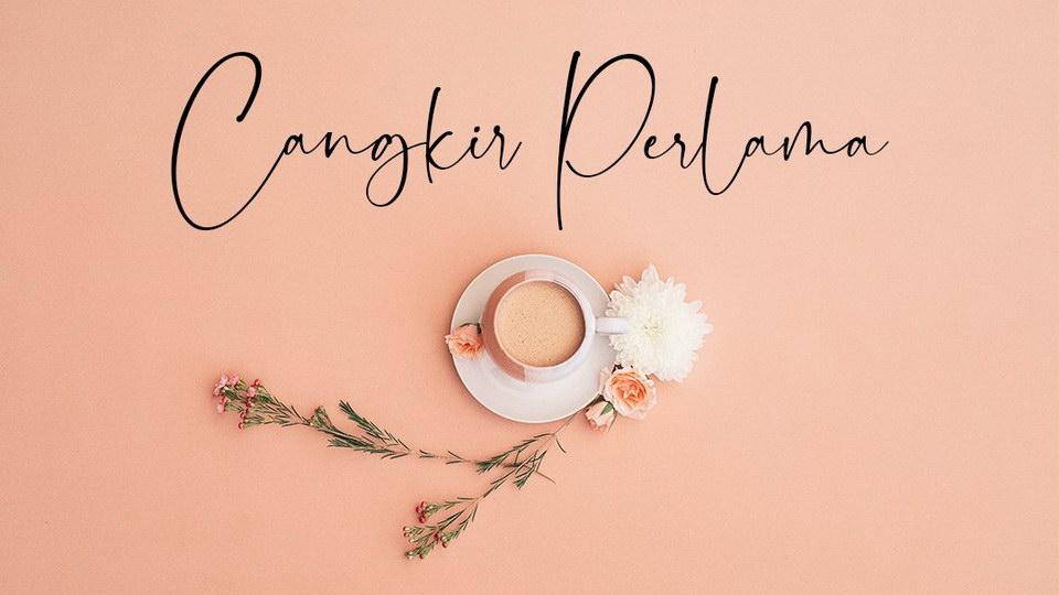 dollamin-2