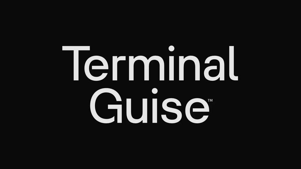 terminal_guise