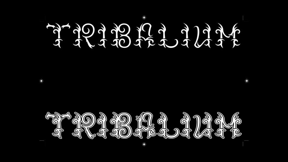 tribalium