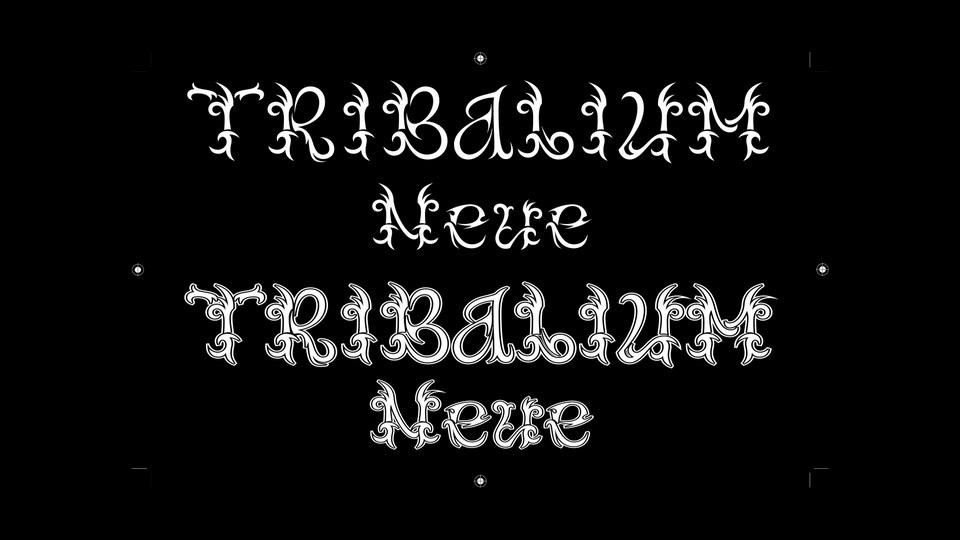 tribalium_neue