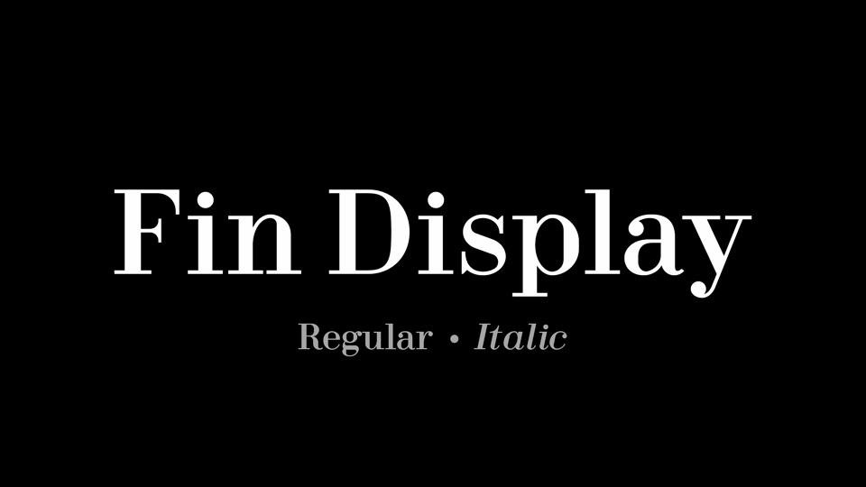 fin_display