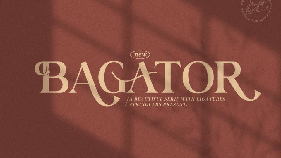 bagator