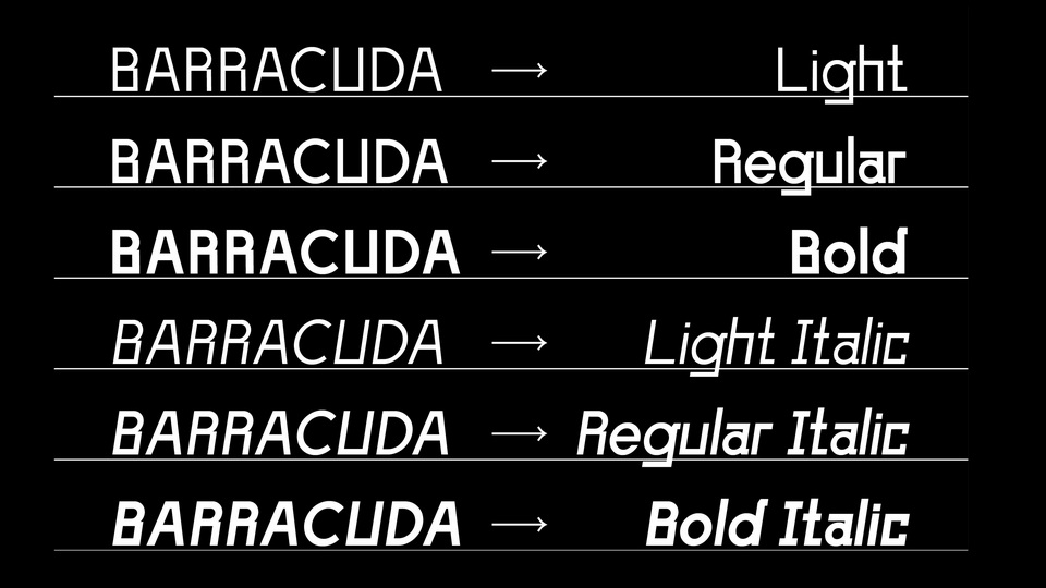barracuda-5