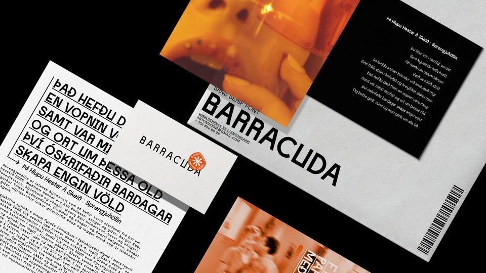 barracuda-8