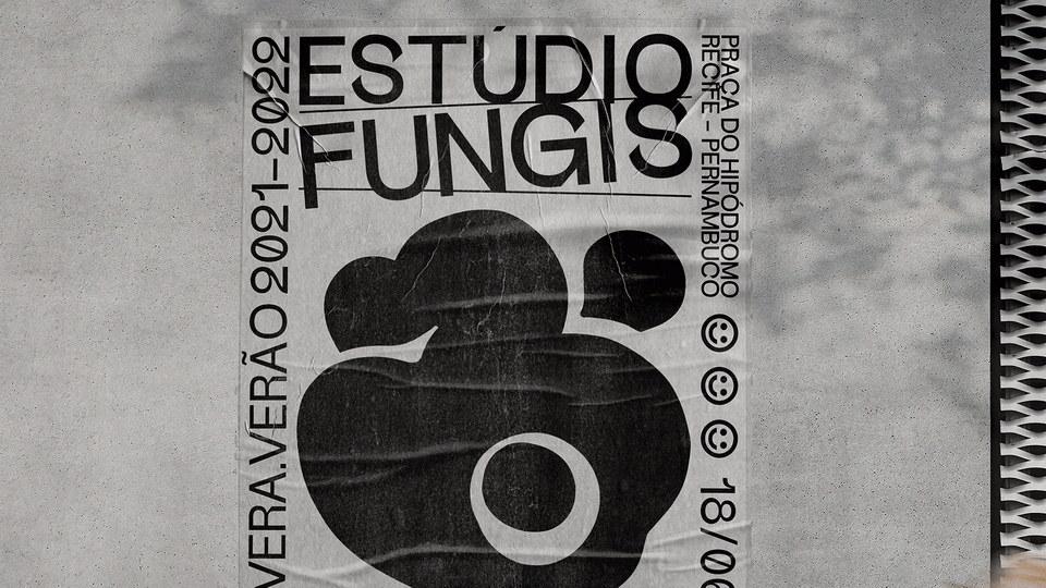 fungis-4