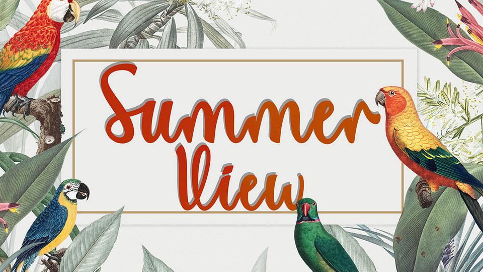 summer_view