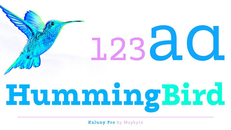 kaluny_pro-1